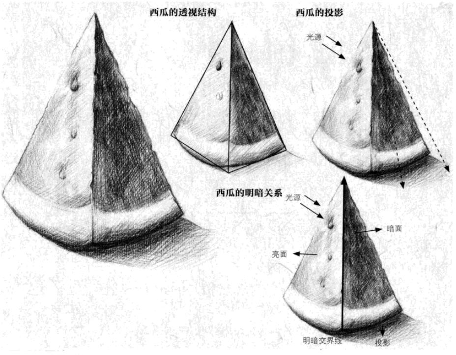 西瓜本身是一个椭圆的球体,切开以后,就能切出一块块锥形的西瓜。观察西瓜本身的固有色分析出西瓜皮的颜色最深,西瓜肉次之,皮与肉之间的白色是最浅的。画的时候要用不同深浅的明暗将其区分开。哈尔滨画室分享素描入门之西瓜画法教程。     先用HB铅笔画出西瓜的大概外形,以此为基础。在之前草稿的基础上画出西瓜的透视,再画出西瓜籽的位置与西瓜皮的位置。将线稿细化,擦掉多余的线条,细细画出西瓜的形状,用线条表现出阴影的位置。    先用2B铅笔涂西瓜灰面的颜色,用笔芯的侧面涂抹,区分出大致的明暗关系。用4B铅笔加西